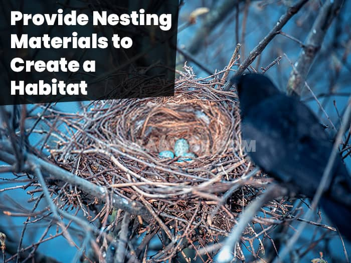Provide Nesting Materials to Create a Habitat
