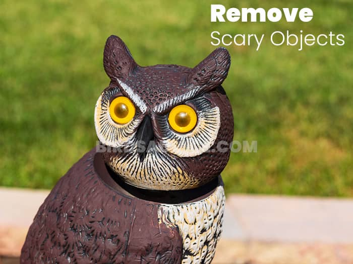 Remove Scary Objects