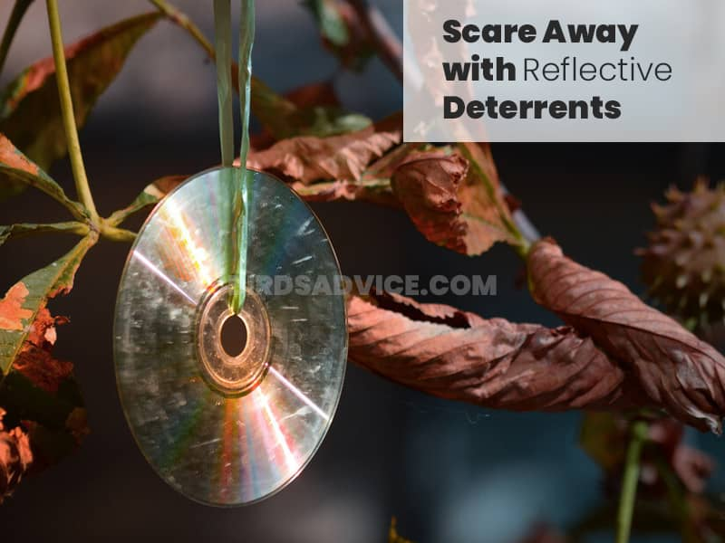 Scare away with reflective deterrents