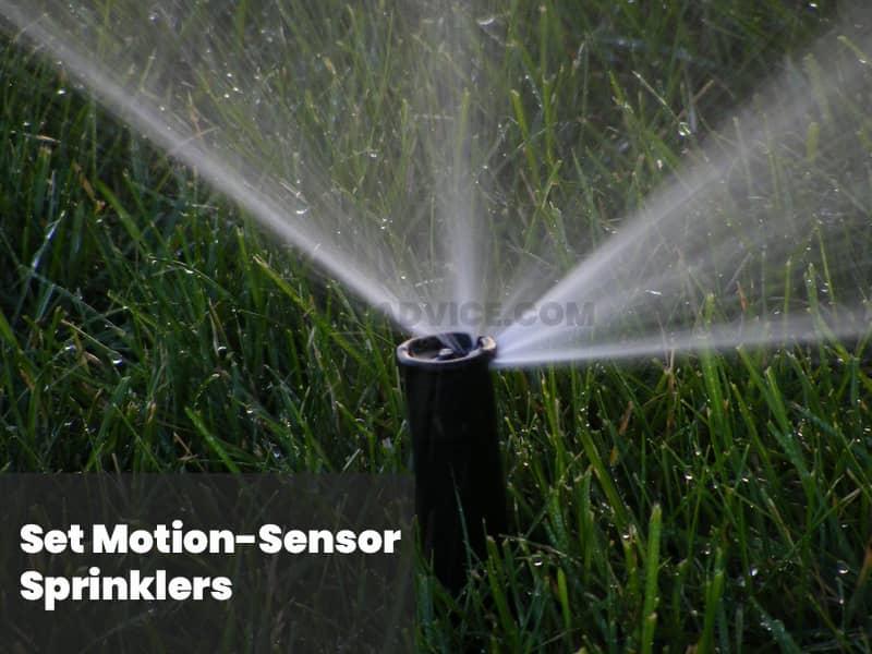 Set motion sensor sprinklers