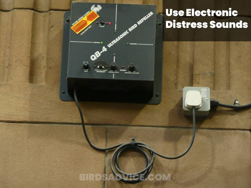 Use electronic distress sounds