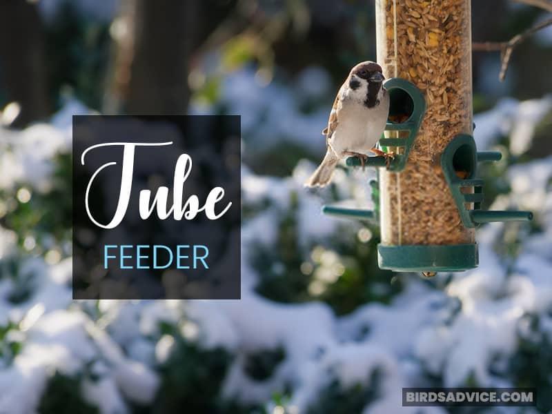 Tube Feeder