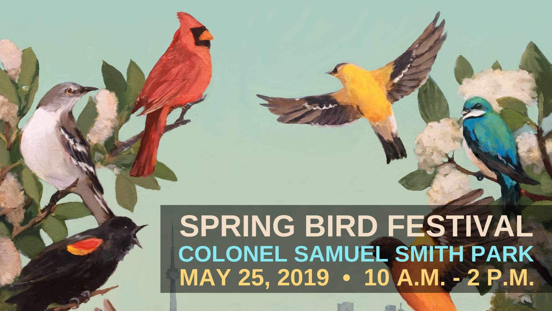 10th Spring Bird Festival at Samuel Smith Park