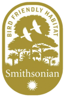 Smithsonian_BFH_Logo_Gold_Solid