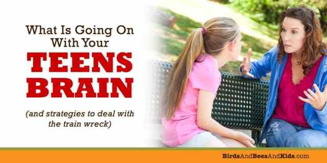 teen-brain
