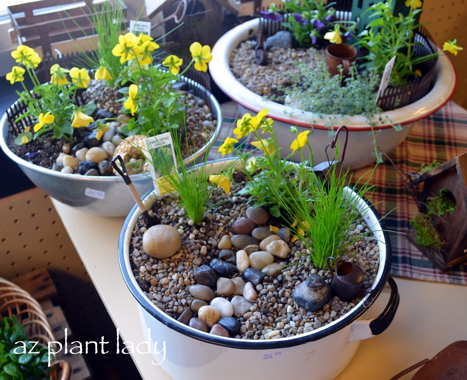 How To Make A Fairy Garden Container  Birds And Blooms