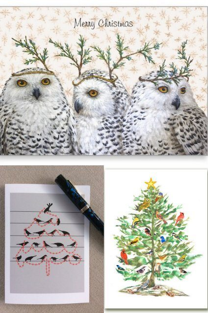 Best Bird Themed Christmas Cards 2015 Holiday Cards