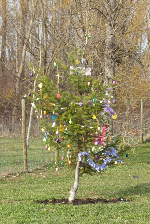 The New Celebration Tree, Easter 2016...