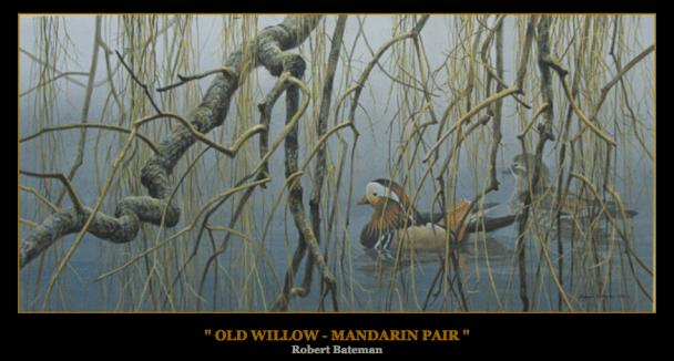 "Robert Bateman ""Old Willow — Mandarin Pair"""
