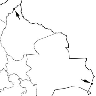 Arenaria interpres