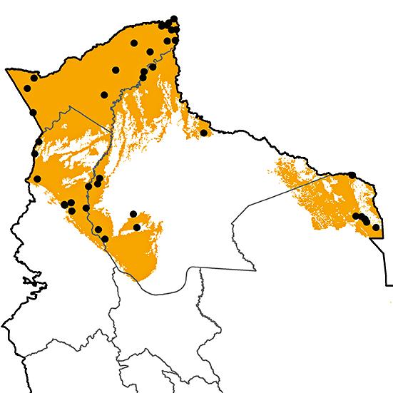 Trogon ramonianus