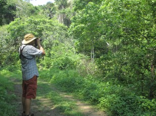 Josh looking for birds at Aguacatal in Mexico