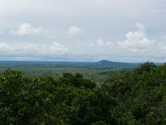 View from Cerro Guacamaya in Mitú Cachivera