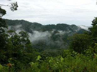 Anchicayá Valley
