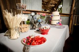 Wedding Dessert-3