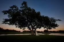 elizabeth-birdsong-photography-austin-wedding-photography-77