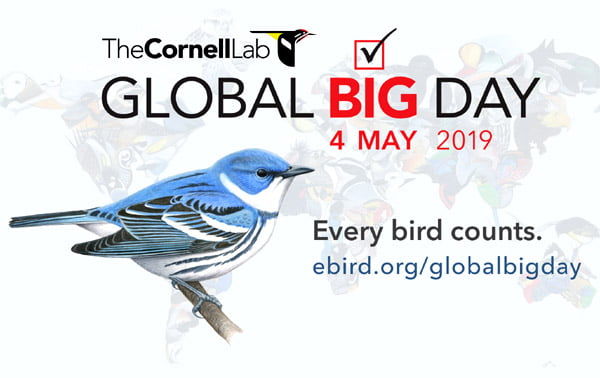 Malaysia Global Big Day 2019