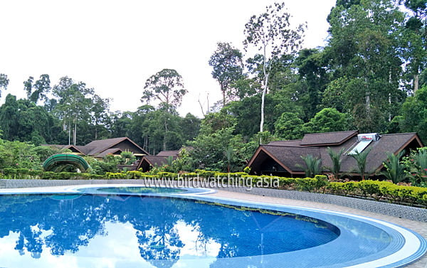 My Nature Resort Sepilok