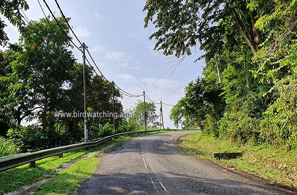 Gunung Raya main road