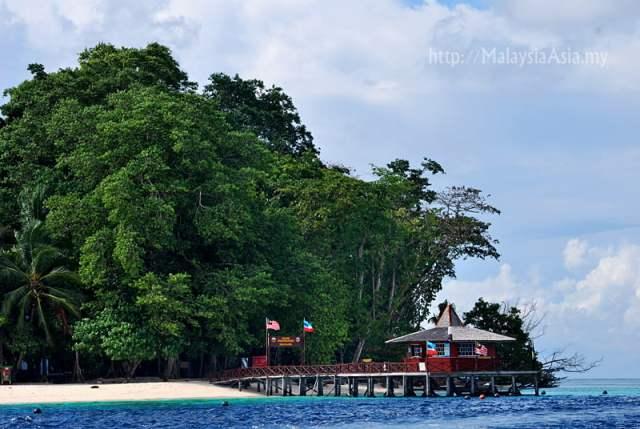 Birdwatching Pulau Sipadan