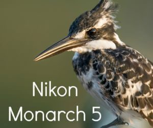 Nikon Monarch 5 Review: 4 Reasons To Purchase Today!