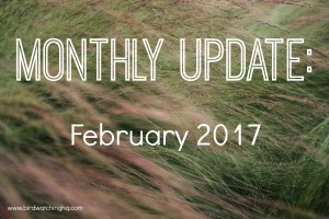 February 2017 Monthly Update