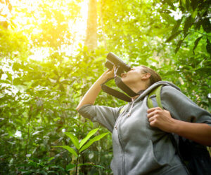 The 9 Best Binoculars for Bird Watching (2021)