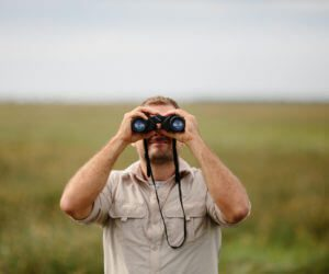 14 Actionable Bird Watching Tips for Beginners (and a few for everyone!)