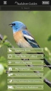 Audubon Best Birding App