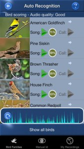 Best Birding Apps for Song ID