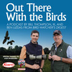 Best Podcasts About Birds
