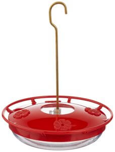 Best Dish Hummingbird Feeder - Plastic