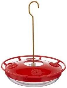 saucer-feeder-228x300.jpg?is-pending-loa