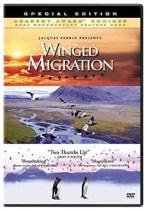 birds movie and bird documentary