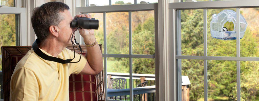 person watching window bird feeders