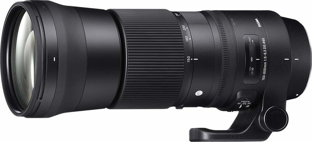 nikon camera lenses for wildlife photography