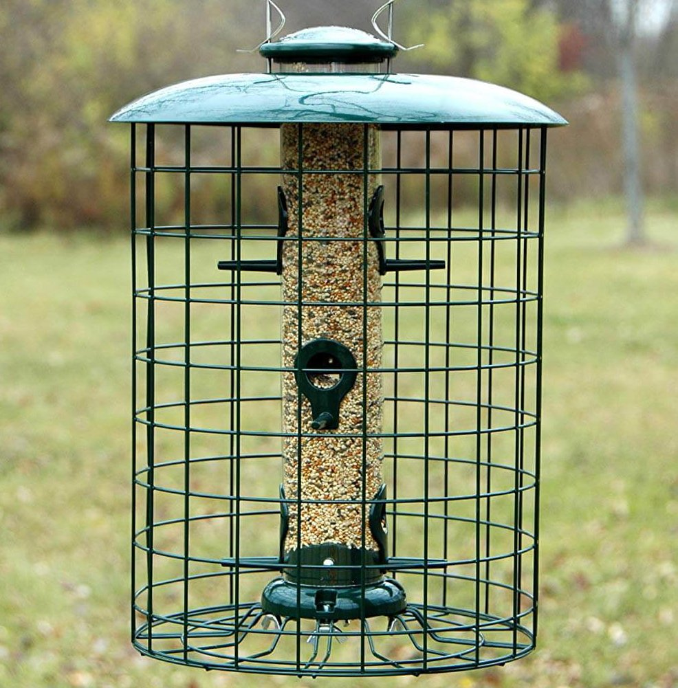starling proof bird feeder