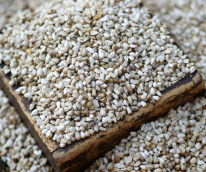 Safflower Seed 101: Everything You Need To Know!