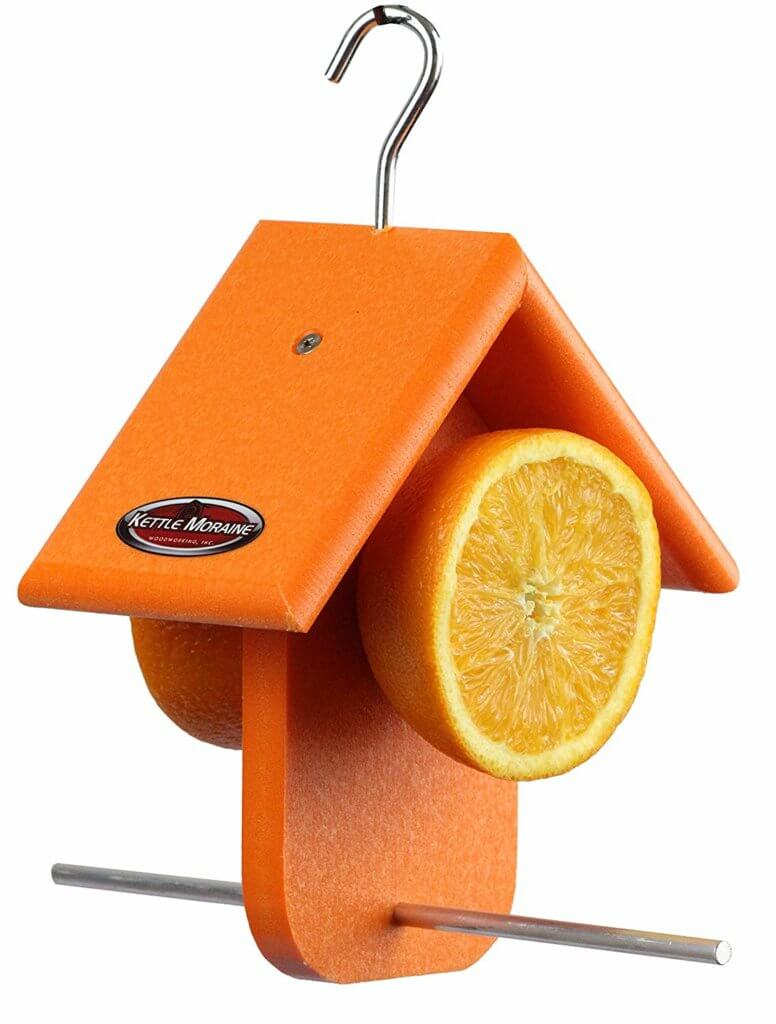 orange fruit oriole feeder