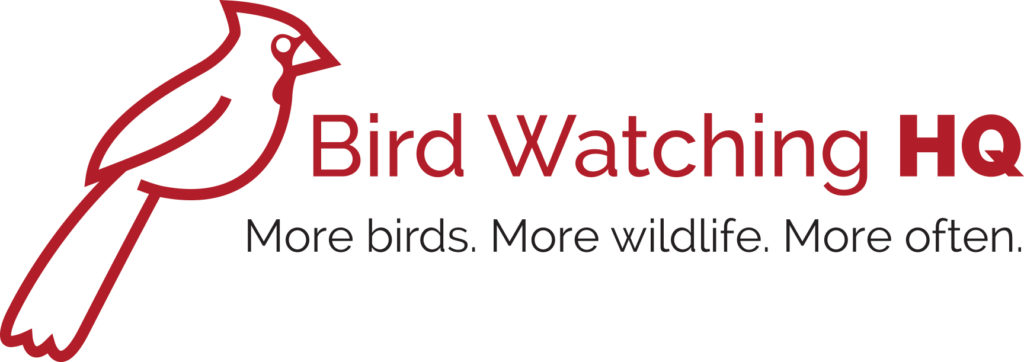 Bird Watching HQ logo with northern cardinal
