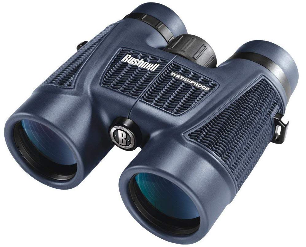 cheap safari binoculars