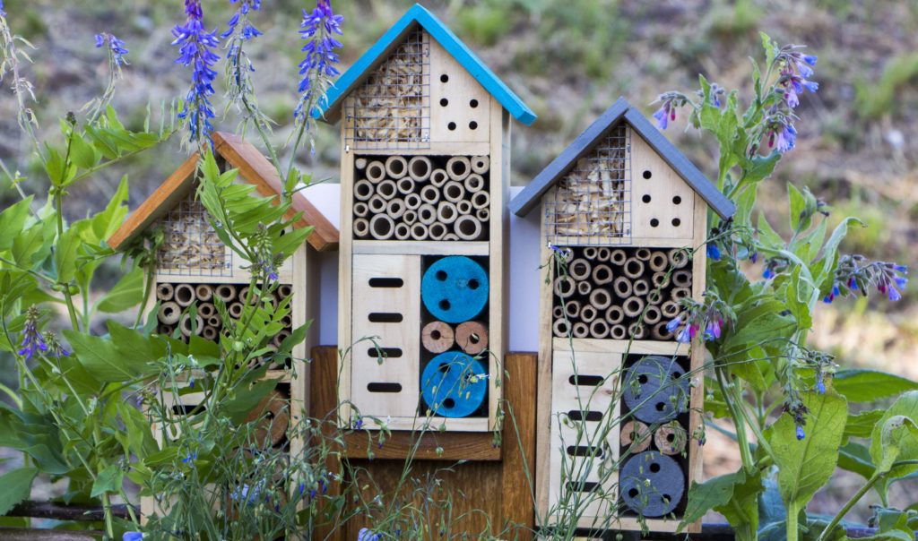 examples of different houses for bees and insects