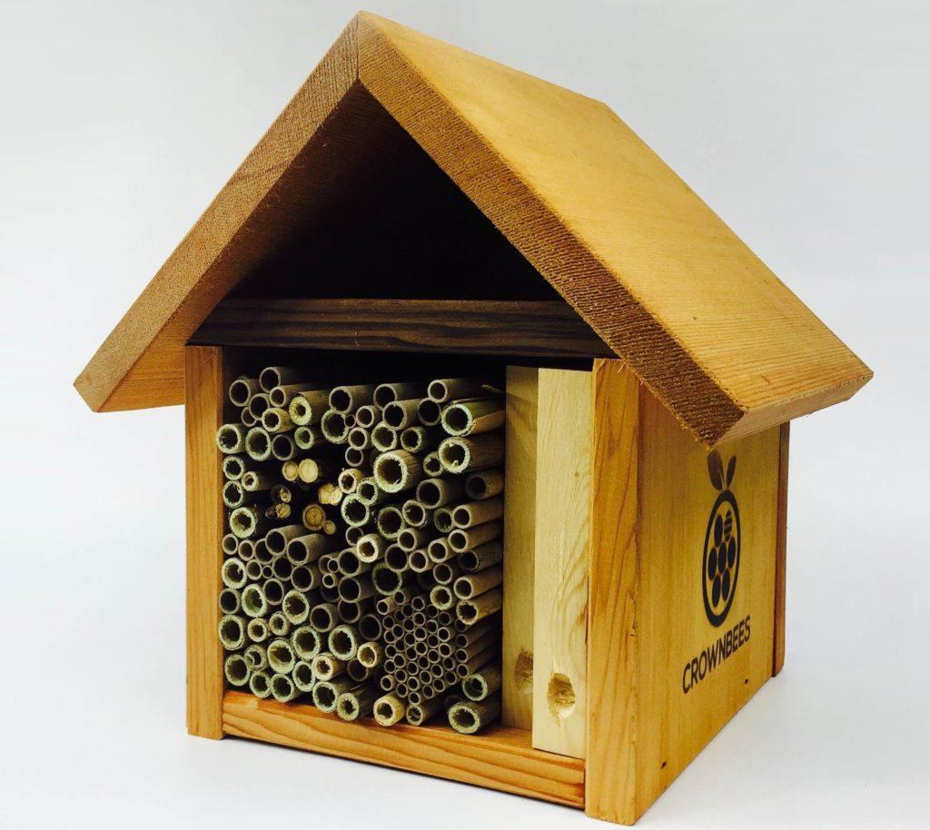 best bee house