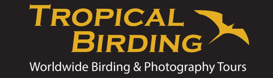 bird watching tours, trips, and vacations