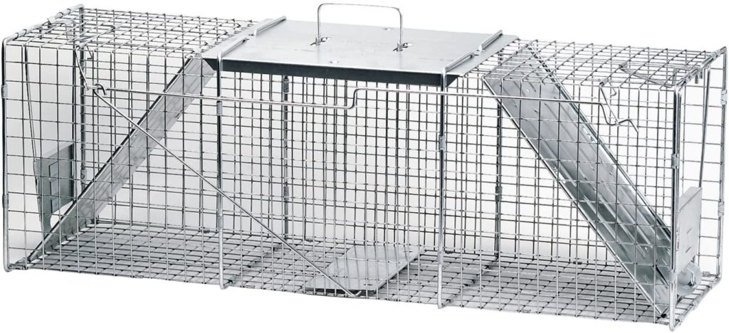 raccoon trap for keeping raccoons away from bird feeders