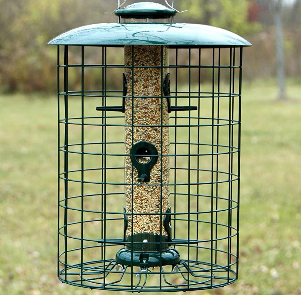 birds feeders that stop raccoons