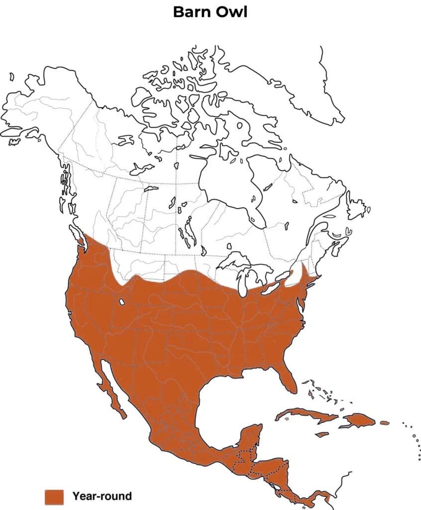 barn owl range map