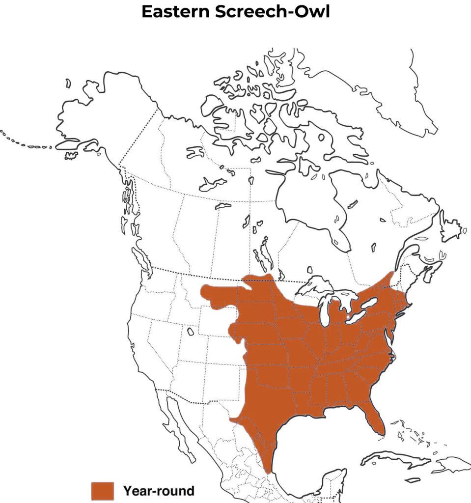 eastern screech-owl range map