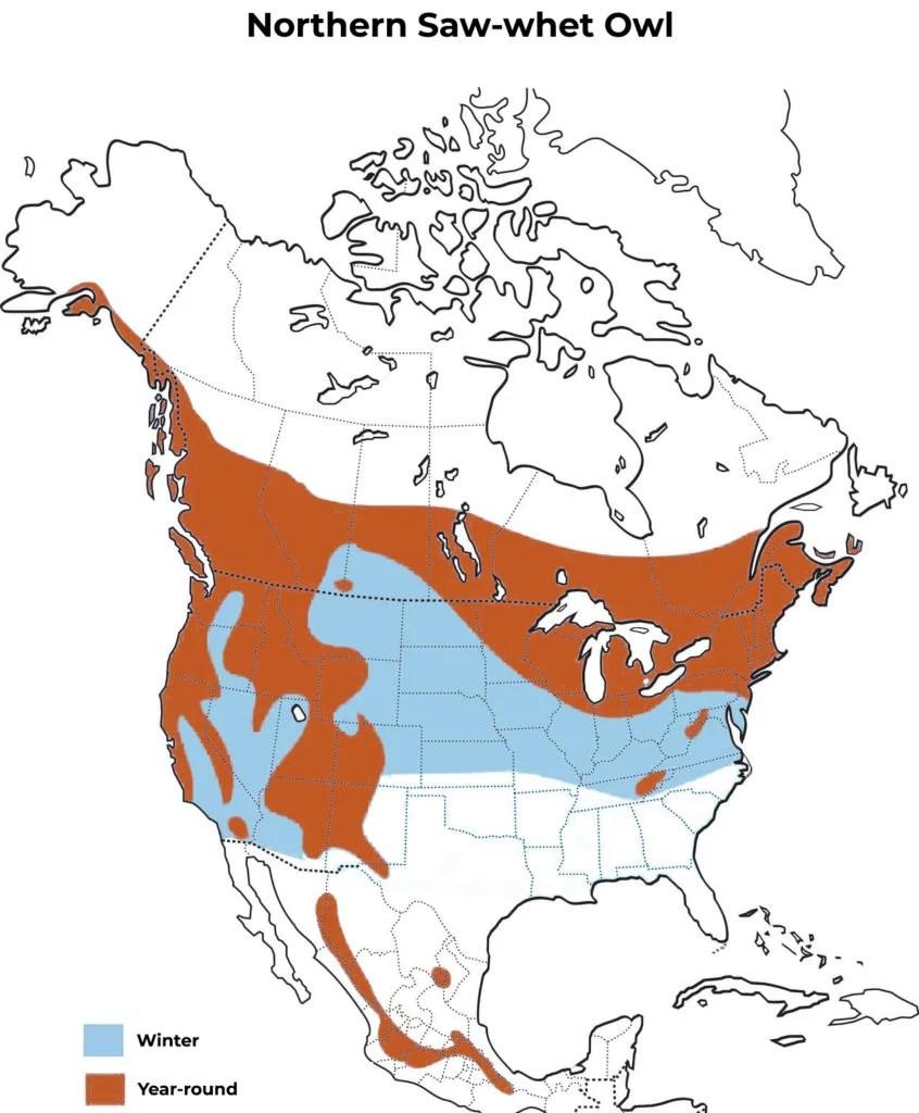 northern saw-whet owl range map