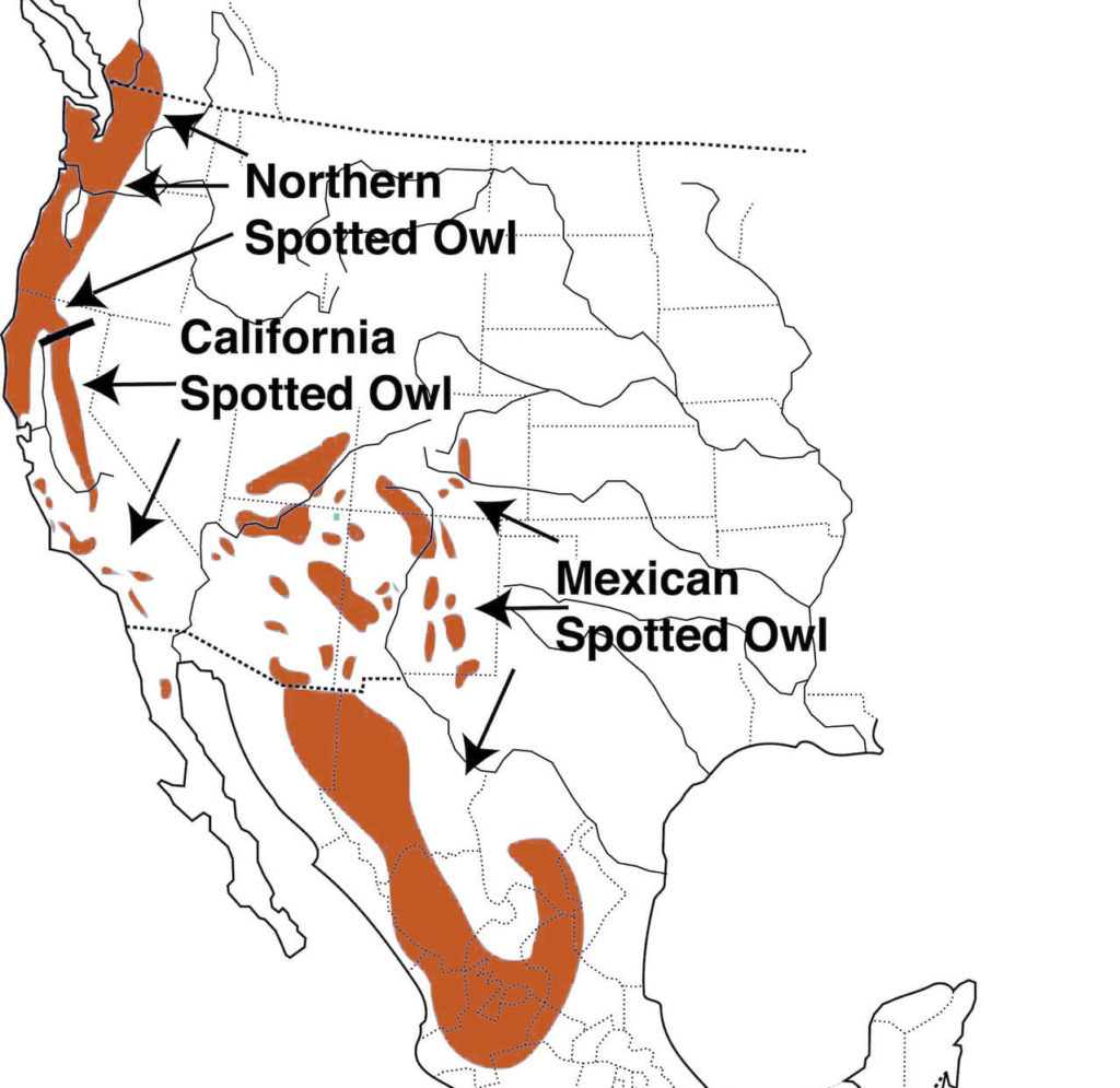spotted owl range map